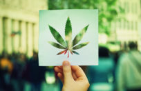 new legislation could positively affect cannabis payroll